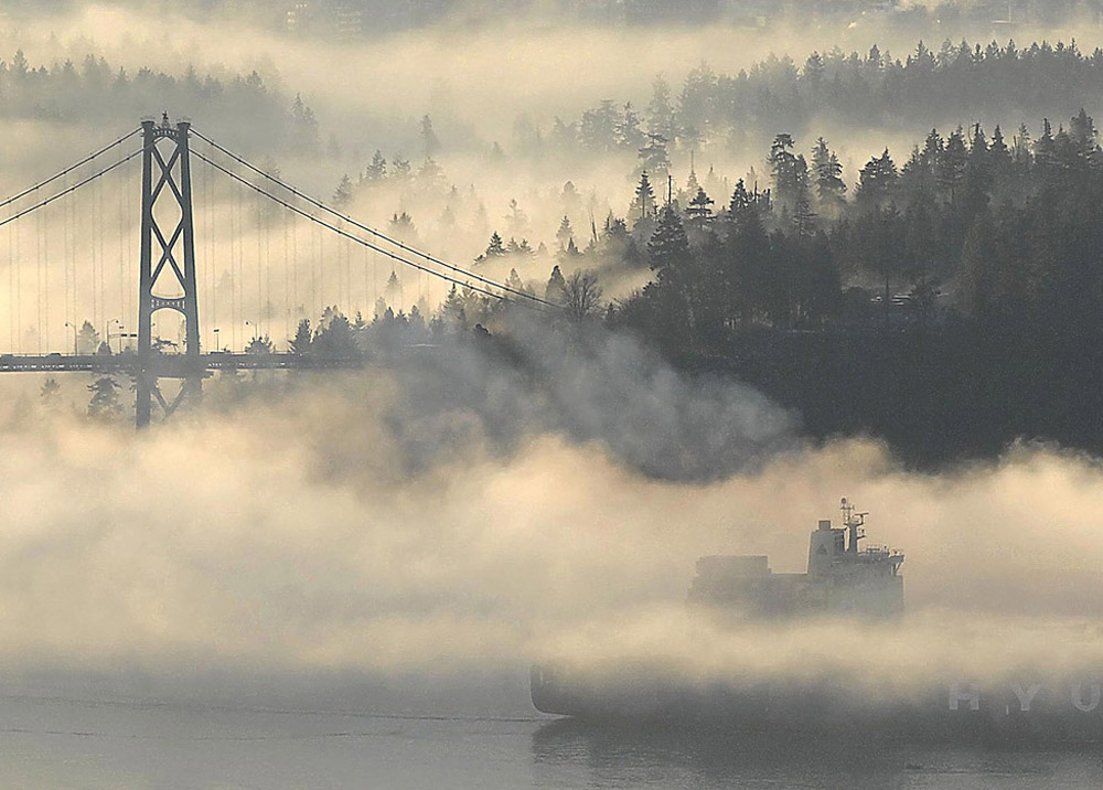 imagenes-paisajes-puente-niebla[1]