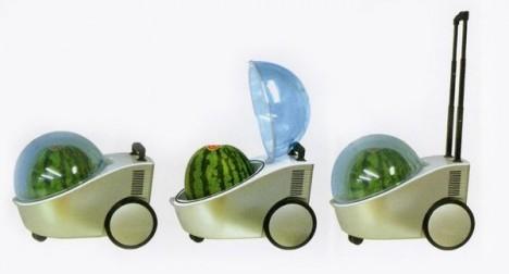 watermelon-portable-cooler-warmer-468x252