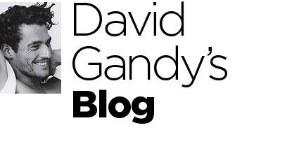 DGandy_V_29Jun10_blogheader_b