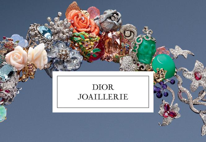Libro joyeria Dior