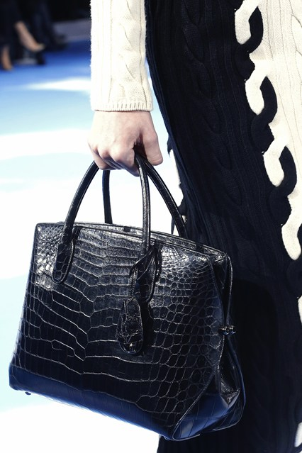 Dior  bags  FW 3013