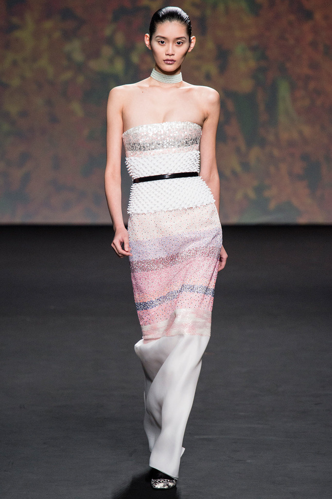 Dior Couture Paris Fall Winter 2013-14