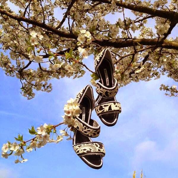 Manolo-Blahnik-Summer-Shoes-06