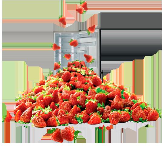refrigeradores_img