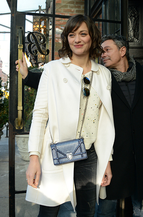 marion-cotillard-dior-it-bag-campaign1
